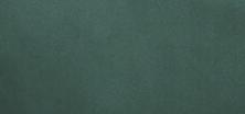 greenvelvet